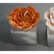 Cube en béton et sa pivoine orange